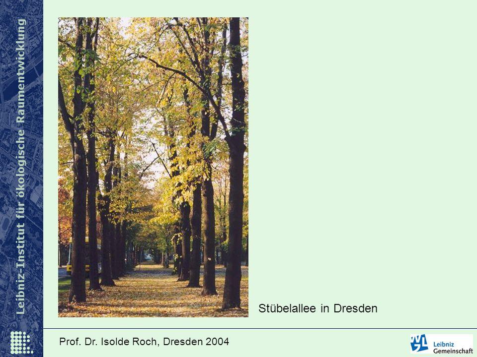 Leibniz-Institut für ökologische Raumentwicklung Prof. Dr. Isolde Roch, Dresden 2004 Stübelallee in Dresden