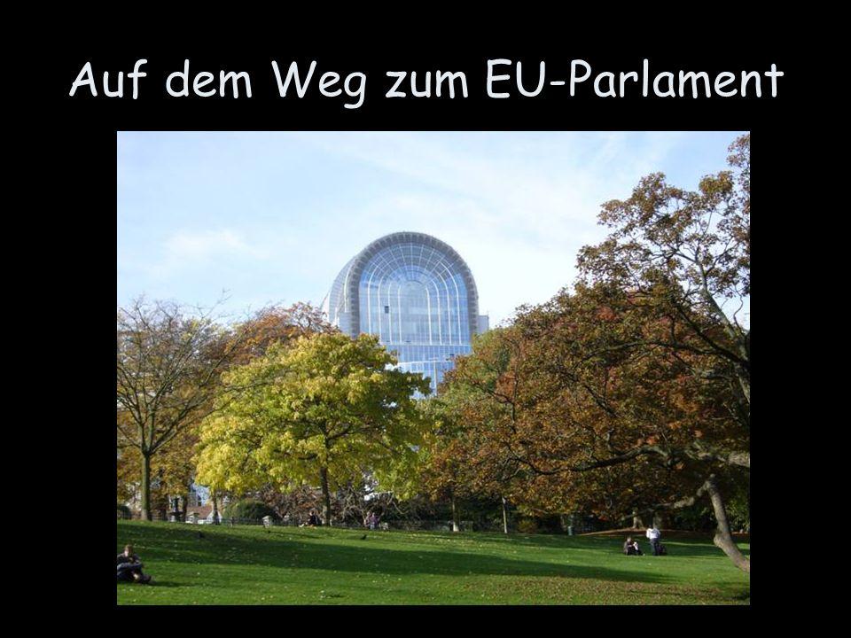 Auf dem Weg zum EU-Parlament