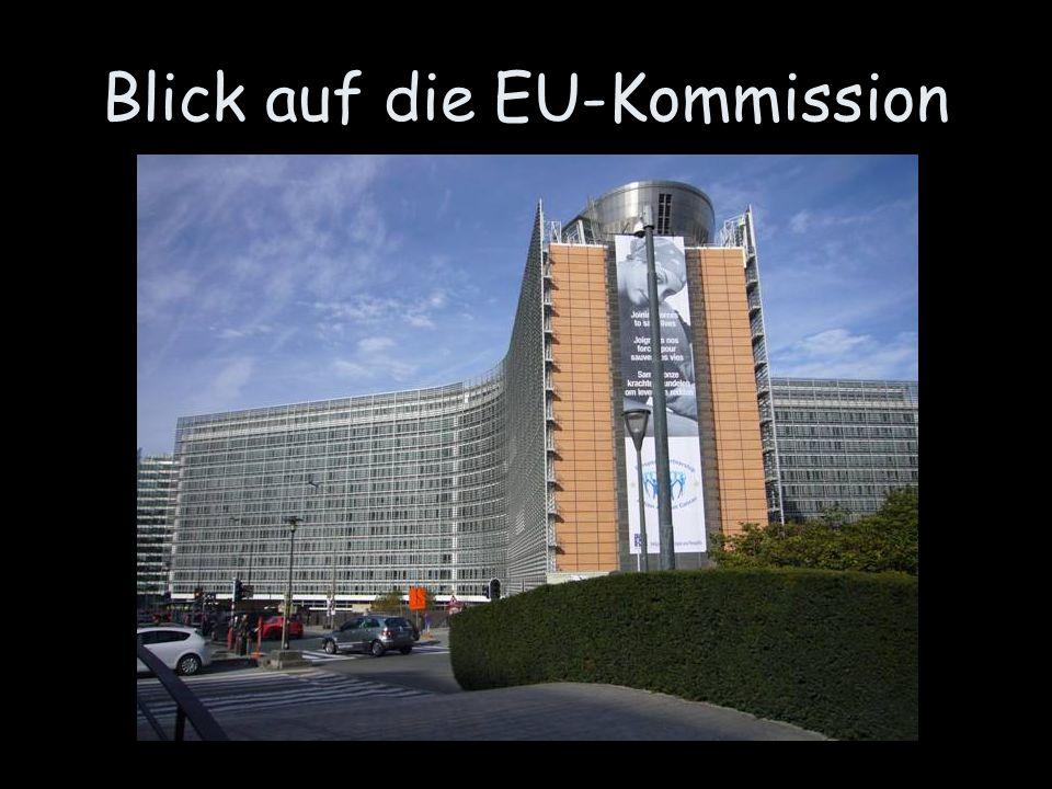 Blick auf die EU-Kommission