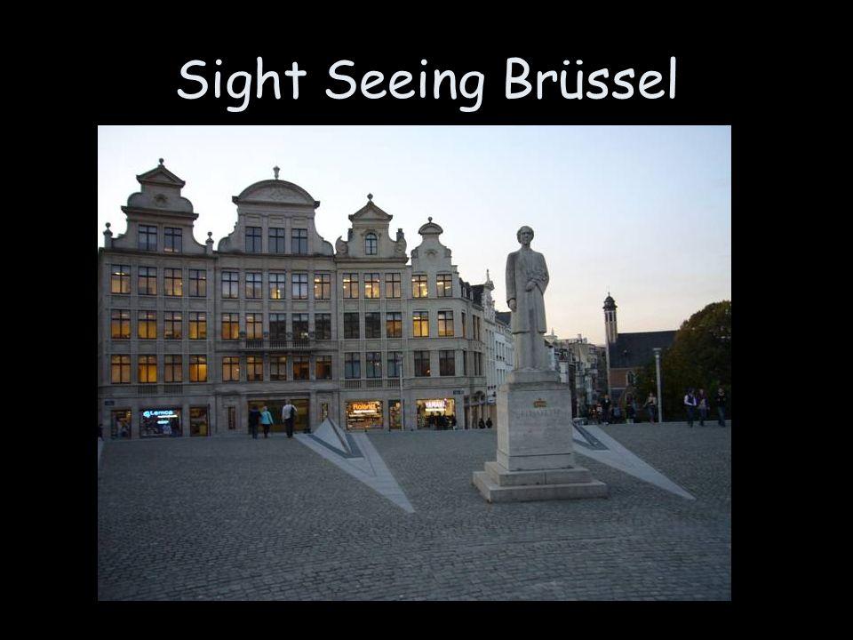 Sight Seeing Brüssel