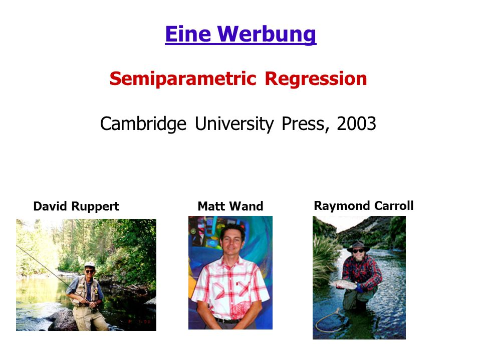 Eine Werbung Semiparametric Regression Cambridge University Press, 2003 David RuppertMatt Wand Raymond Carroll