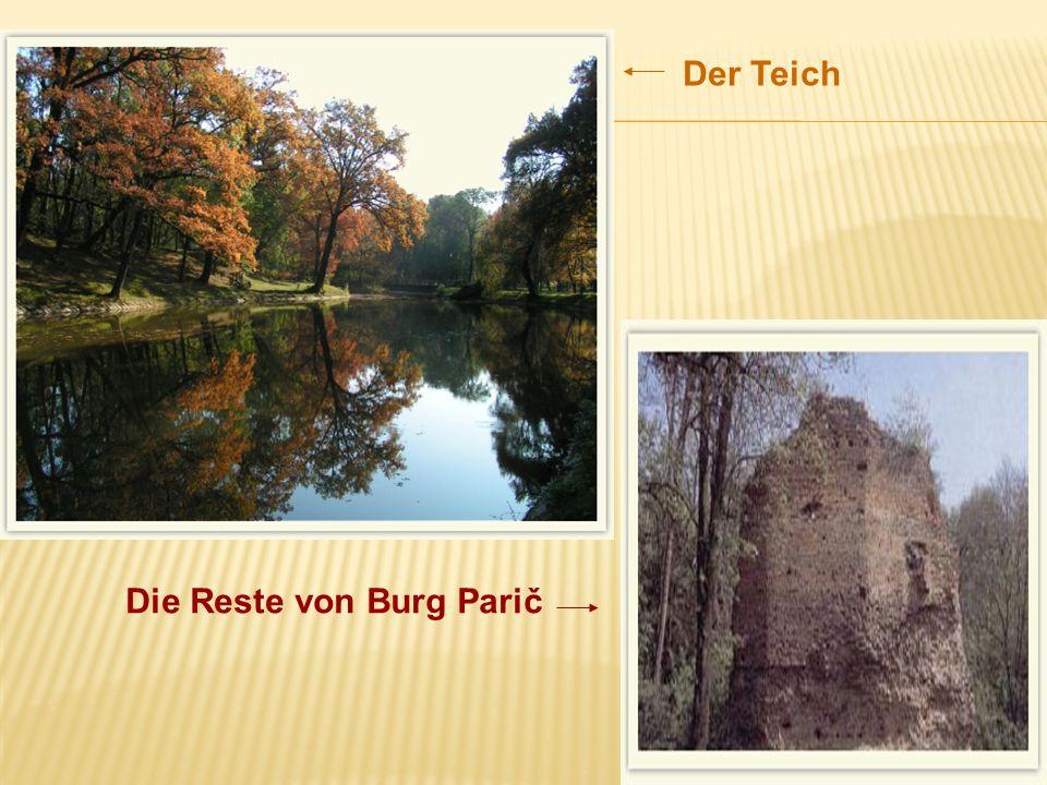 Der Teich Die Reste von Burg Parič