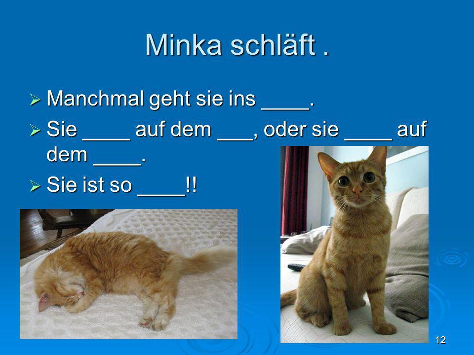 Minka schläft. Manchmal geht sie ins ____. Manchmal geht sie ins ____. Sie ____ auf dem ___, oder sie ____ auf dem ____. Sie ____ auf dem ___, oder si