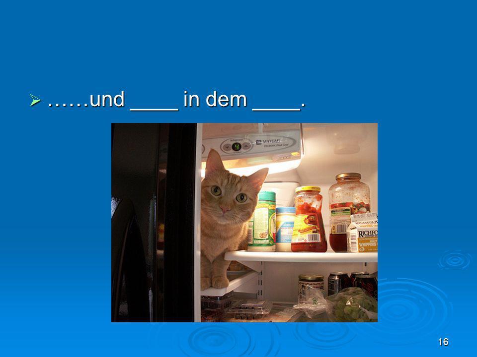 ……und ____ in dem ____. ……und ____ in dem ____. 16