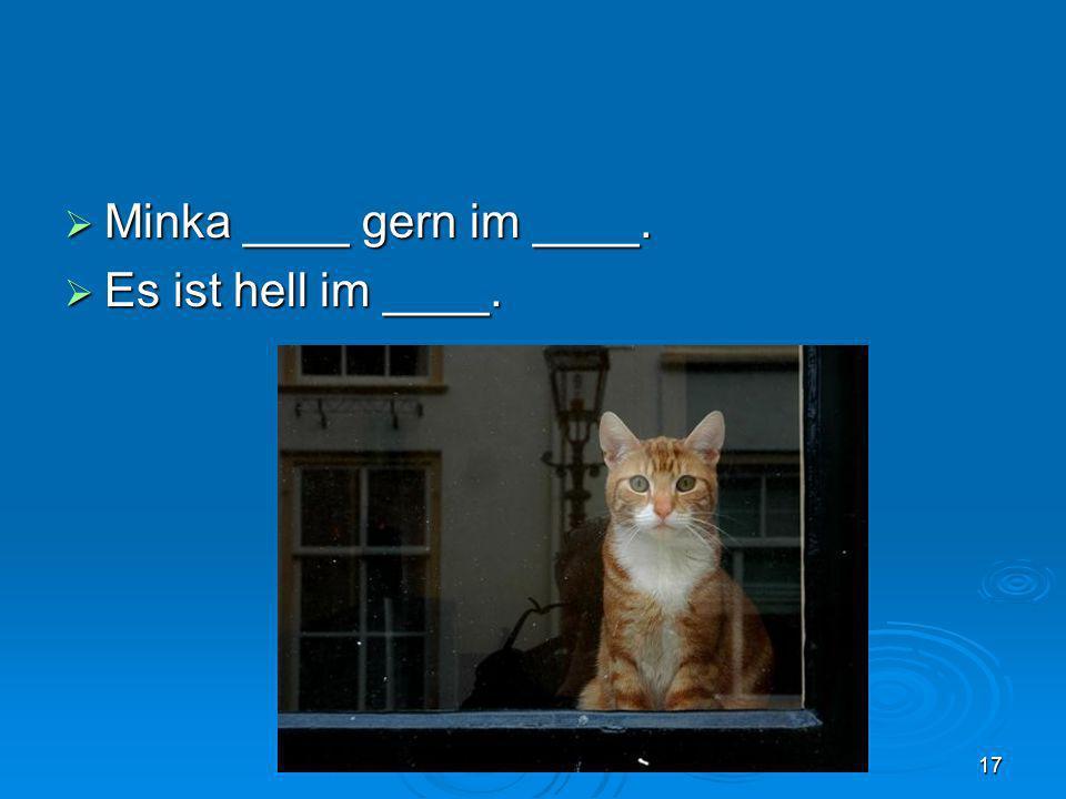 Minka ____ gern im ____. Minka ____ gern im ____. Es ist hell im ____. Es ist hell im ____. 17