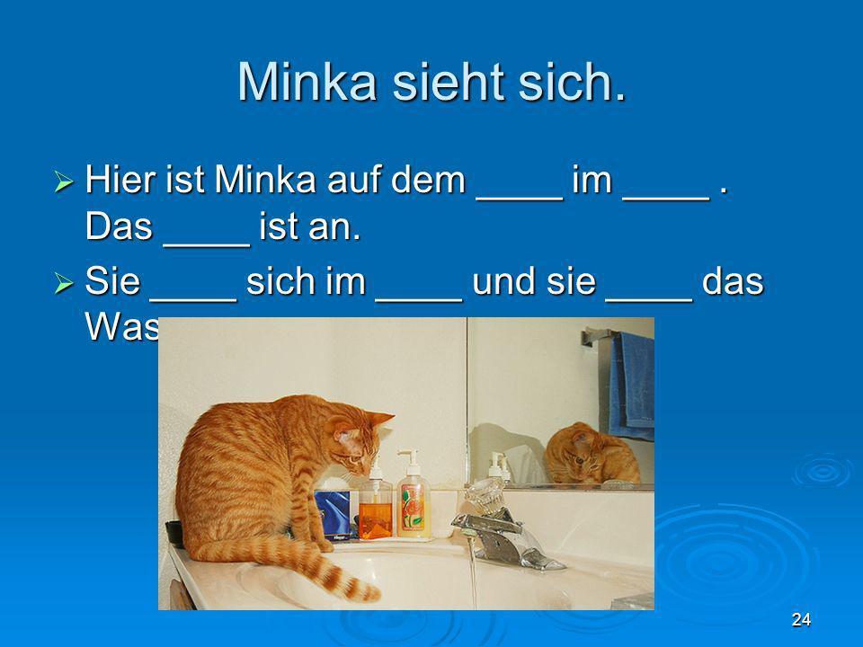 Minka sieht sich. Hier ist Minka auf dem ____ im ____. Das ____ ist an. Hier ist Minka auf dem ____ im ____. Das ____ ist an. Sie ____ sich im ____ un