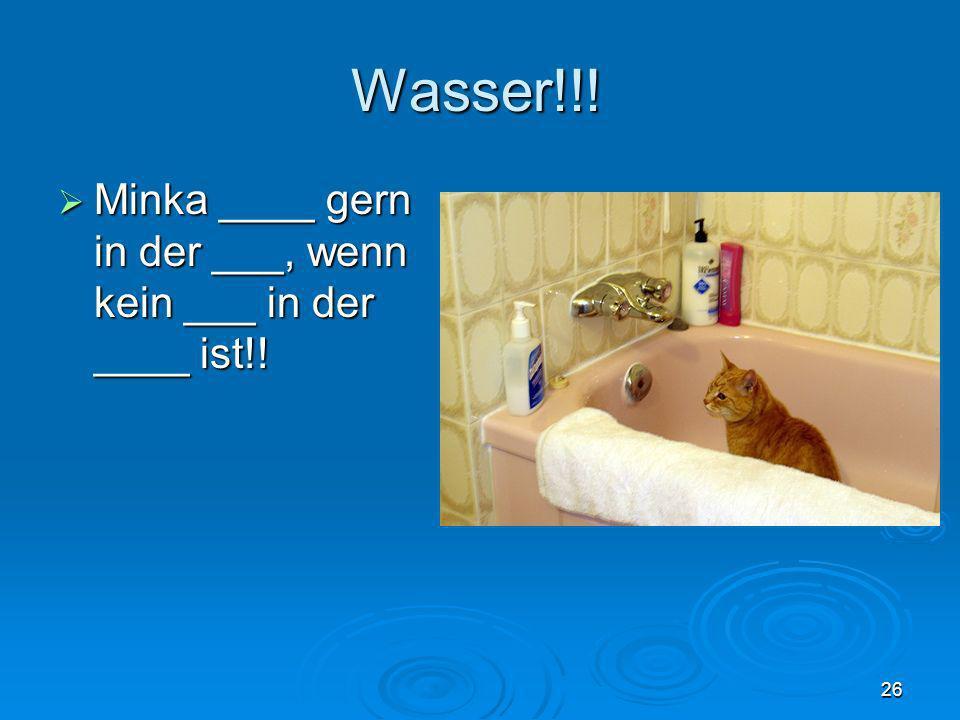 Wasser!!! Minka ____ gern in der ___, wenn kein ___ in der ____ ist!! Minka ____ gern in der ___, wenn kein ___ in der ____ ist!! 26