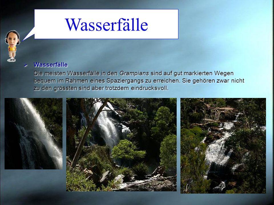 Wasserfälle Die meisten Wasserfälle in den Grampians sind auf gut markierten Wegen bequem im Rahmen eines Spaziergangs zu erreichen. Sie gehören zwar