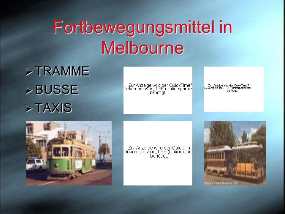Melbourne erscheint vielen Besuchern als ein multikulturelles, buntes Gemisch, in dem ein einheitliches Gesicht zu suchen eine v ö llig unm ö gliche Aufgabe zu sein scheint.