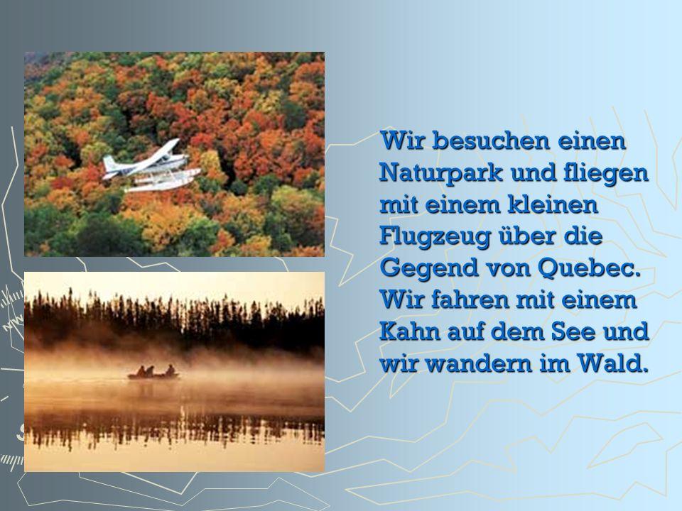 Wir besuchen einen Naturpark und fliegen mit einem kleinen Flugzeug über die Gegend von Quebec. Wir fahren mit einem Kahn auf dem See und wir wandern