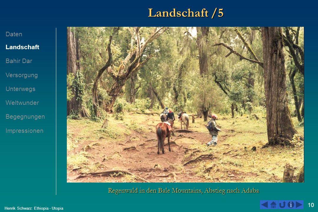 10 Henrik Schwarz: Ethiopia - Utopia Landschaft /5 Regenwald in den Bale Mountains, Abstieg nach Adaba Daten Landschaft Bahir Dar Versorgung Unterwegs