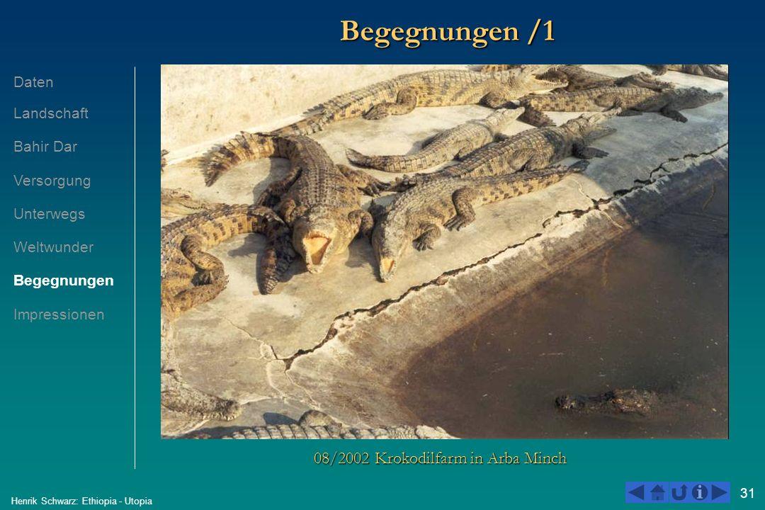 31 Henrik Schwarz: Ethiopia - Utopia Begegnungen /1 08/2002 Krokodilfarm in Arba Minch Daten Landschaft Bahir Dar Versorgung Unterwegs Weltwunder Bege