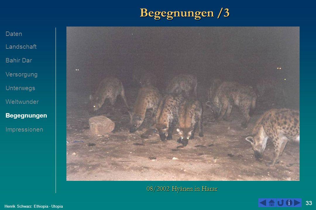33 Henrik Schwarz: Ethiopia - Utopia Begegnungen /3 08/2002 Hyänen in Harar Daten Landschaft Bahir Dar Versorgung Unterwegs Weltwunder Begegnungen Imp