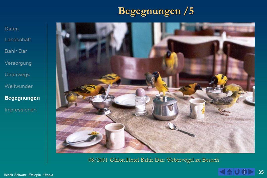 35 Henrik Schwarz: Ethiopia - Utopia Begegnungen /5 08/2001 Ghion Hotel Bahir Dar: Webervögel zu Besuch Daten Landschaft Bahir Dar Versorgung Unterweg