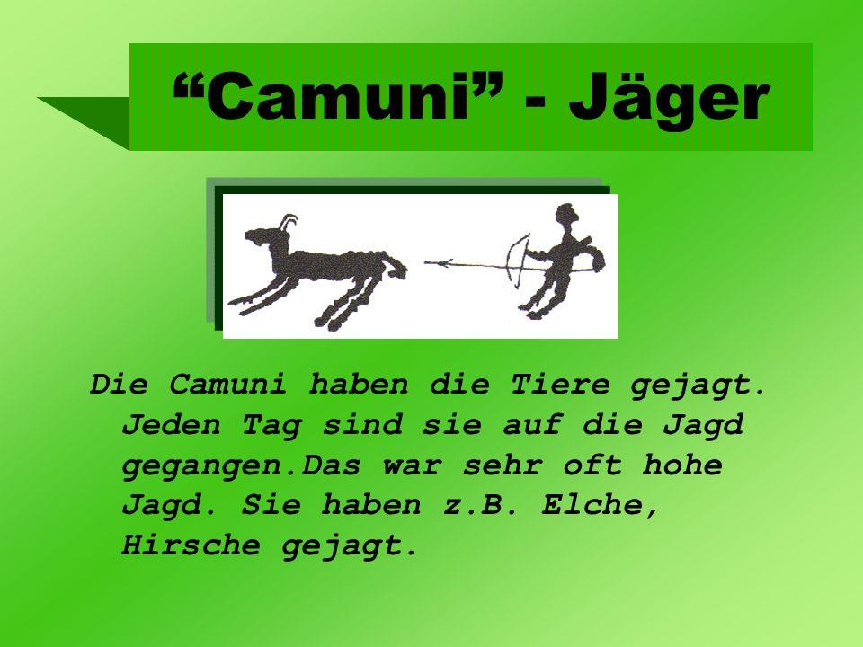 Camuni - Jäger Die Camuni haben die Tiere gejagt. Jeden Tag sind sie auf die Jagd gegangen.Das war sehr oft hohe Jagd. Sie haben z.B. Elche, Hirsche g
