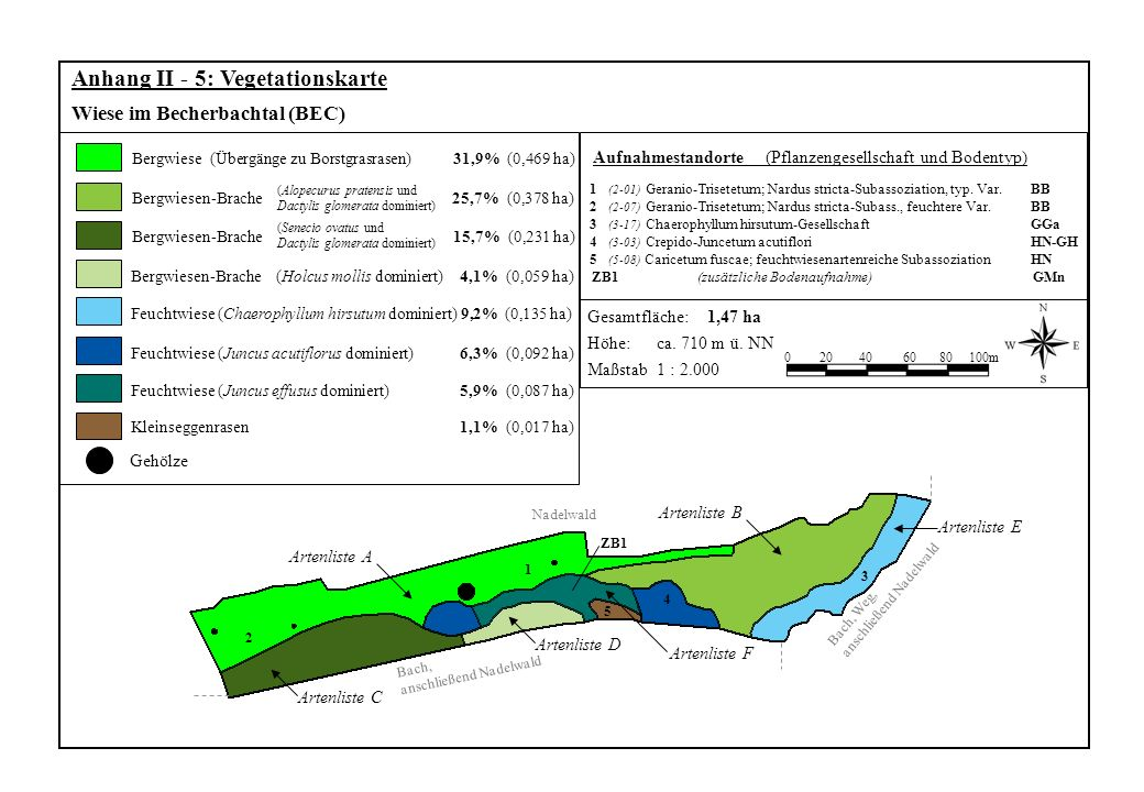Gehölze Bergwiesen-Brache Bergwiese (Übergänge zu Borstgrasrasen) 31,9% (0,469 ha) Anhang II - 5: Vegetationskarte Wiese im Becherbachtal (BEC) 204060