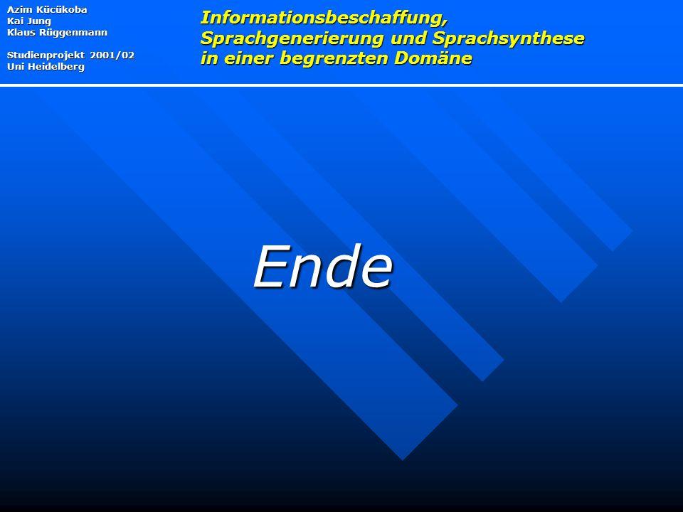 Azim Kücükoba Kai Jung Klaus Rüggenmann Studienprojekt 2001/02 Uni Heidelberg Informationsbeschaffung, Sprachgenerierung und Sprachsynthese in einer begrenzten Domäne Ende