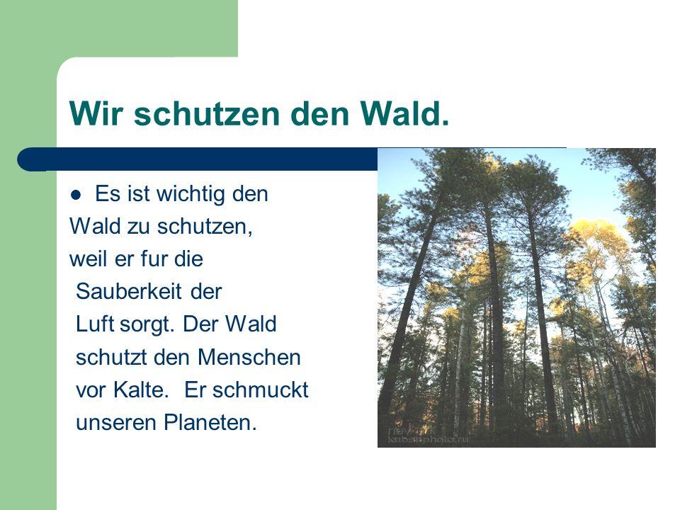 Wir schutzen den Wald. Es ist wichtig den Wald zu schutzen, weil er fur die Sauberkeit der Luft sorgt. Der Wald schutzt den Menschen vor Kalte. Er sch