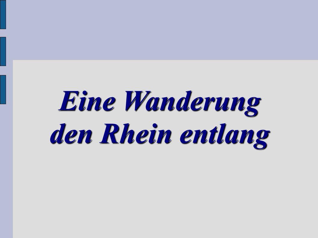 Eine Wanderung den Rhein entlang