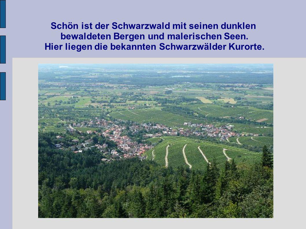Schön ist der Schwarzwald mit seinen dunklen bewaldeten Bergen und malerischen Seen. Hier liegen die bekannten Schwarzwälder Kurorte.