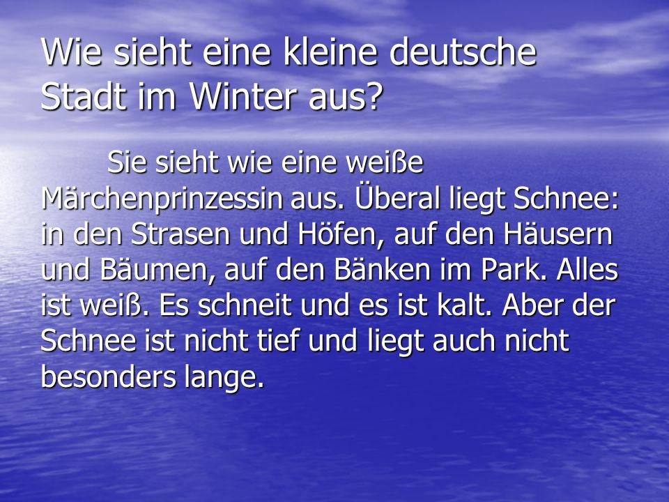 Wie sieht eine kleine deutsche Stadt im Winter aus? Sie sieht wie eine weiße Märchenprinzessin aus. Überal liegt Schnee: in den Strasen und Höfen, auf