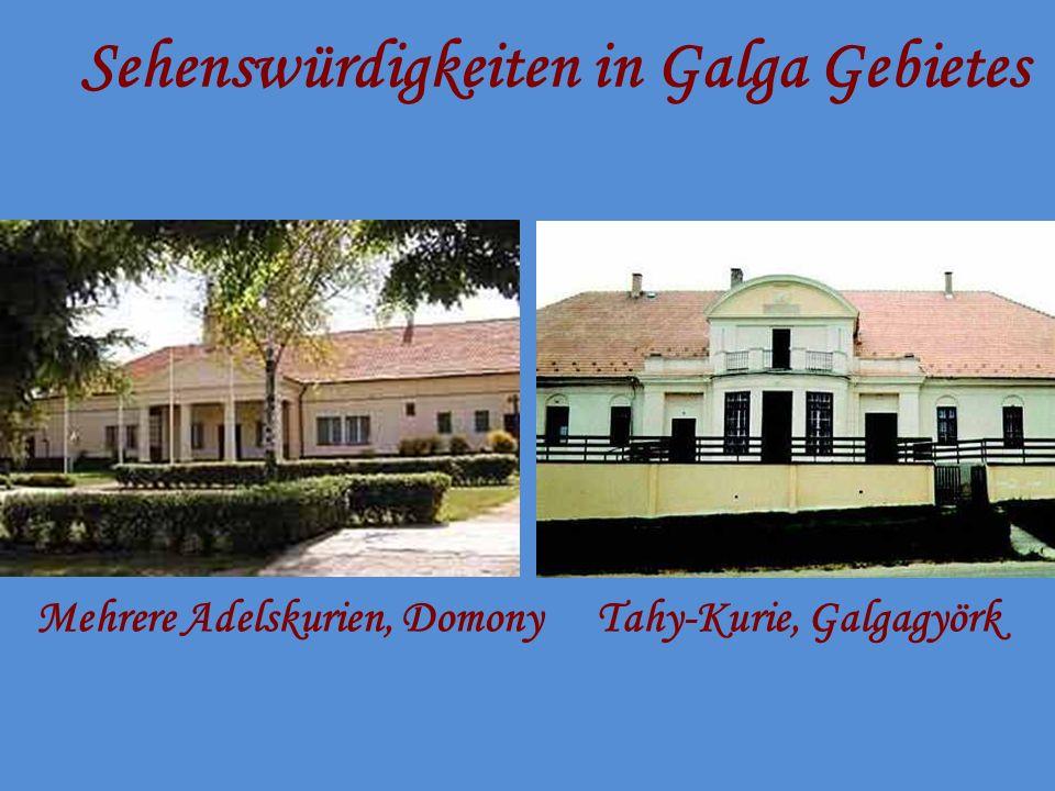 Sehenswürdigkeiten in Galga Gebietes Mehrere Adelskurien, DomonyTahy-Kurie, Galgagyörk