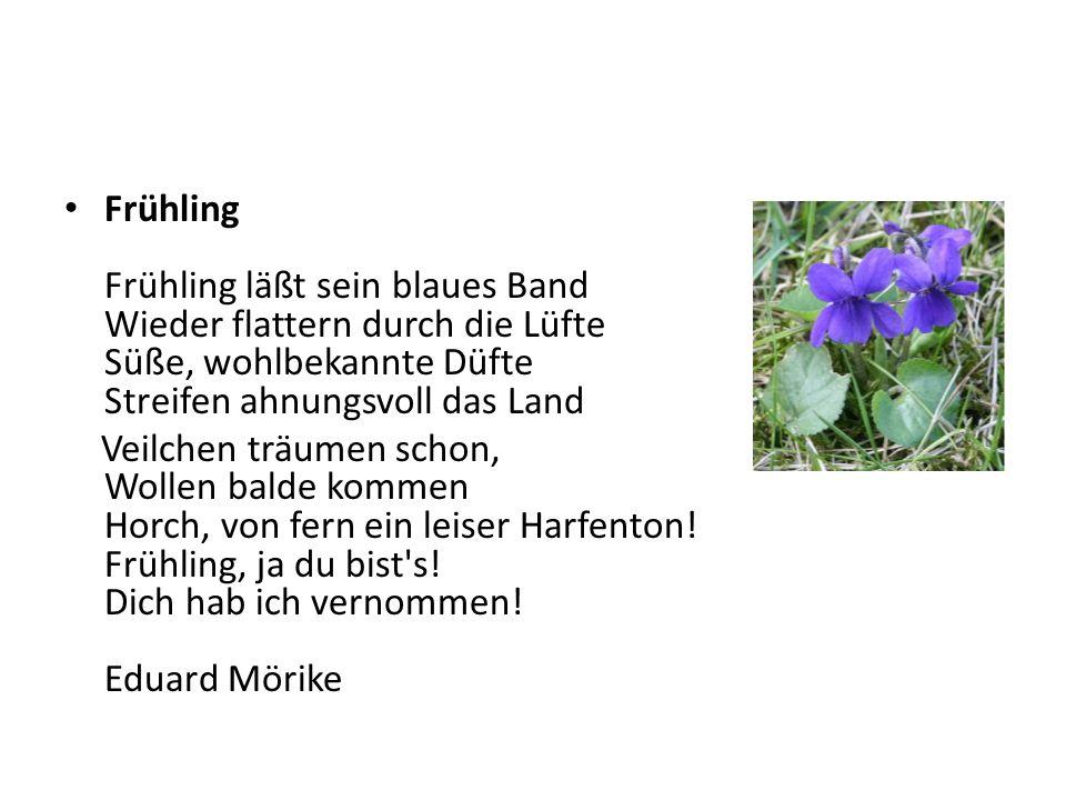 Frühling Frühling läßt sein blaues Band Wieder flattern durch die Lüfte Süße, wohlbekannte Düfte Streifen ahnungsvoll das Land Veilchen träumen schon,
