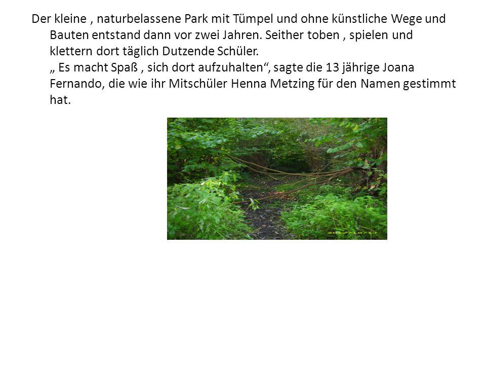 Der kleine, naturbelassene Park mit Tümpel und ohne künstliche Wege und Bauten entstand dann vor zwei Jahren. Seither toben, spielen und klettern dort