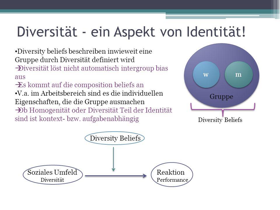 Diversität - ein Aspekt von Identität! Gruppe m m w w Diversity beliefs beschreiben inwieweit eine Gruppe durch Diversität definiert wird Diversität l
