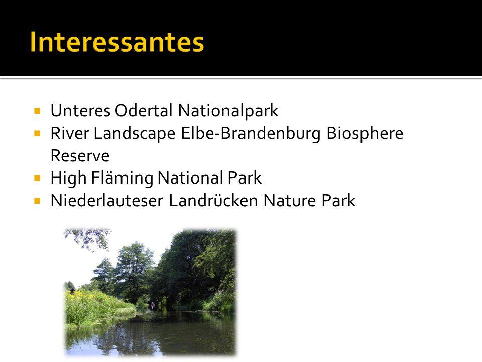 Unteres Odertal Nationalpark River Landscape Elbe-Brandenburg Biosphere Reserve High Fläming National Park Niederlauteser Landrücken Nature Park