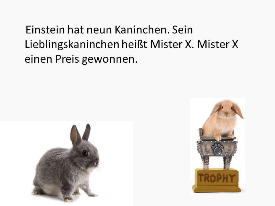 Einstein hat neun Kaninchen. Sein Lieblingskaninchen heißt Mister X. Mister X einen Preis gewonnen.