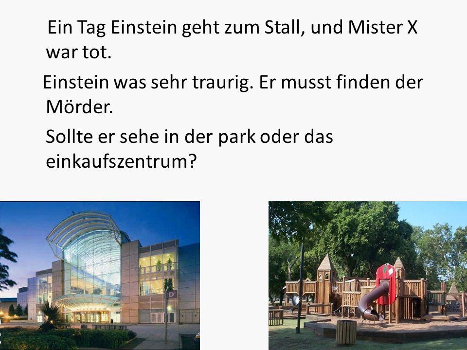 Ein Tag Einstein geht zum Stall, und Mister X war tot. Einstein was sehr traurig. Er musst finden der Mörder. Sollte er sehe in der park oder das eink