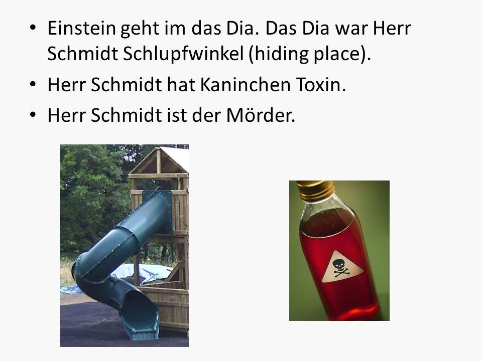 Einstein geht im das Dia. Das Dia war Herr Schmidt Schlupfwinkel (hiding place). Herr Schmidt hat Kaninchen Toxin. Herr Schmidt ist der Mörder.