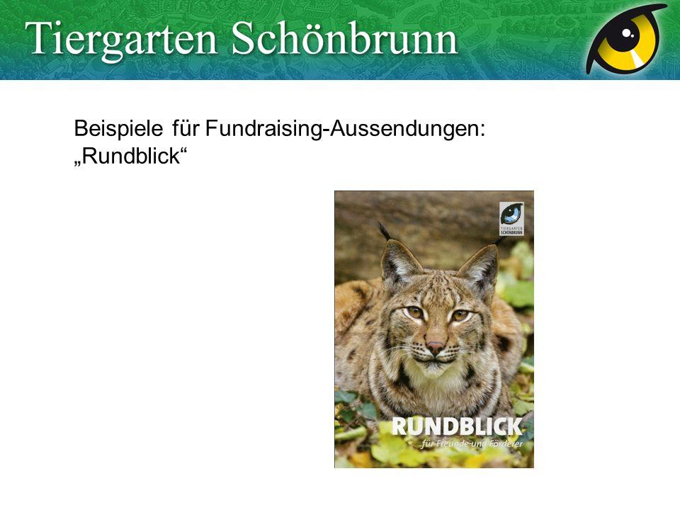 Beispiele für Fundraising-Aussendungen: Rundblick