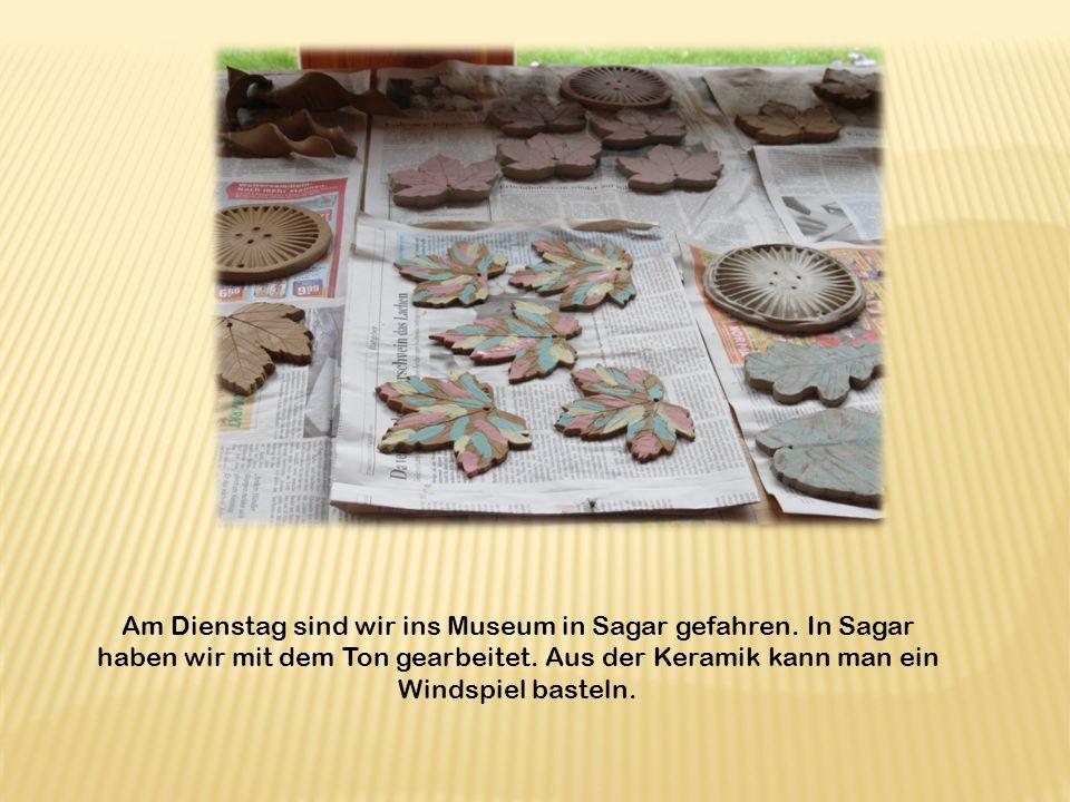 Am Dienstag sind wir ins Museum in Sagar gefahren.