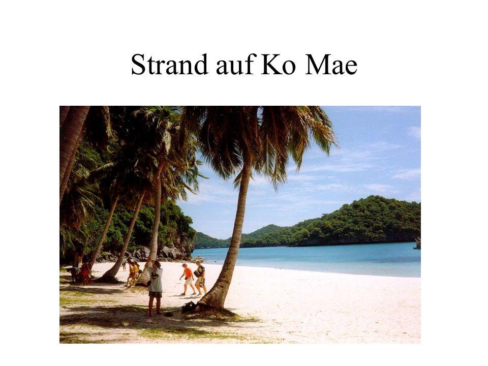 Strand auf Ko Mae