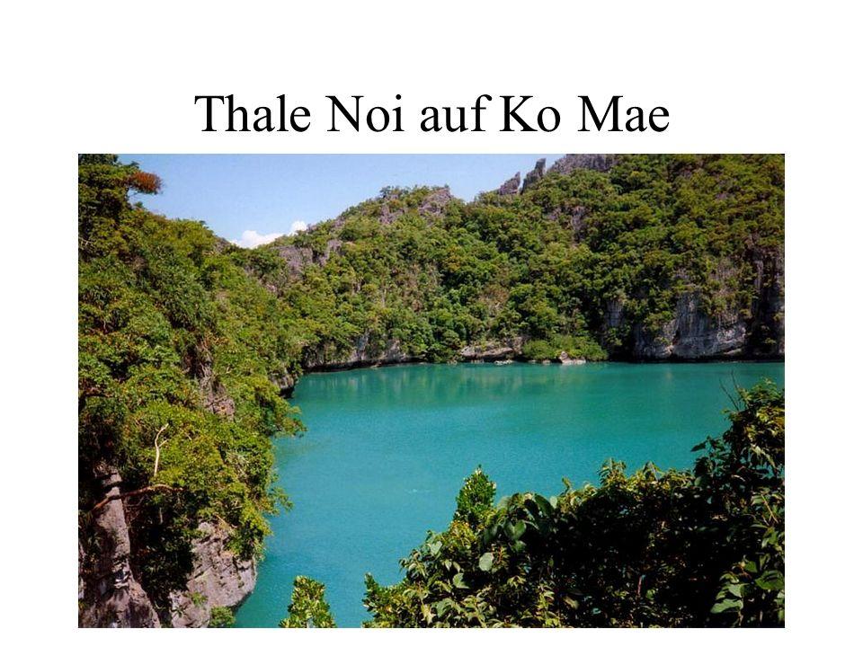 Thale Noi auf Ko Mae