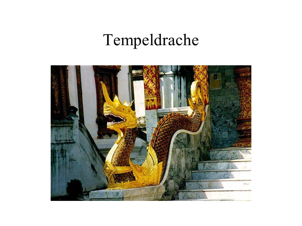 Tempeldrache