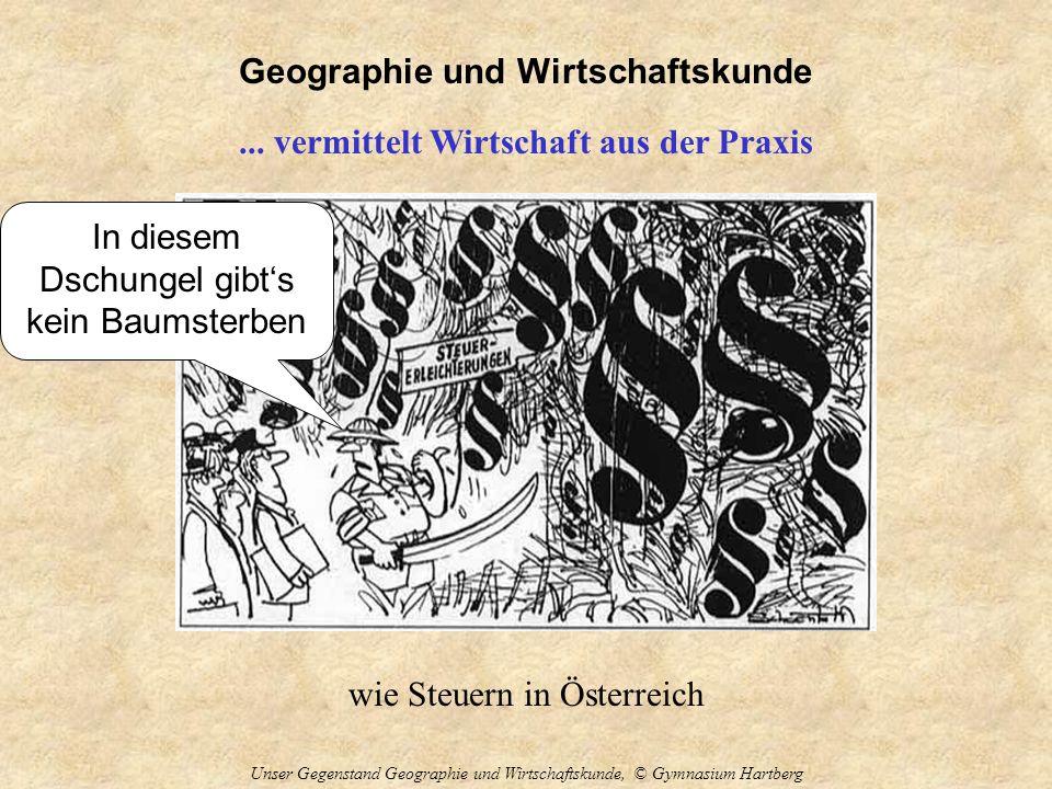 Geographie und Wirtschaftskunde Unser Gegenstand Geographie und Wirtschaftskunde, © Gymnasium Hartberg... vermittelt Wirtschaft aus der Praxis wie Ste