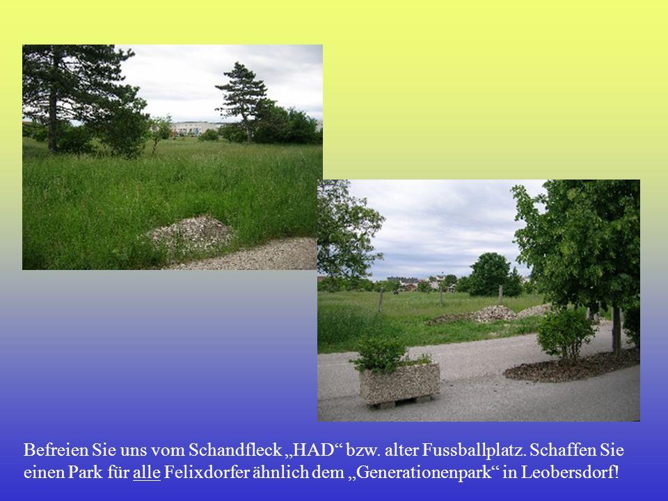 Befreien Sie uns vom Schandfleck HAD bzw. alter Fussballplatz. Schaffen Sie einen Park für alle Felixdorfer ähnlich dem Generationenpark in Leobersdor