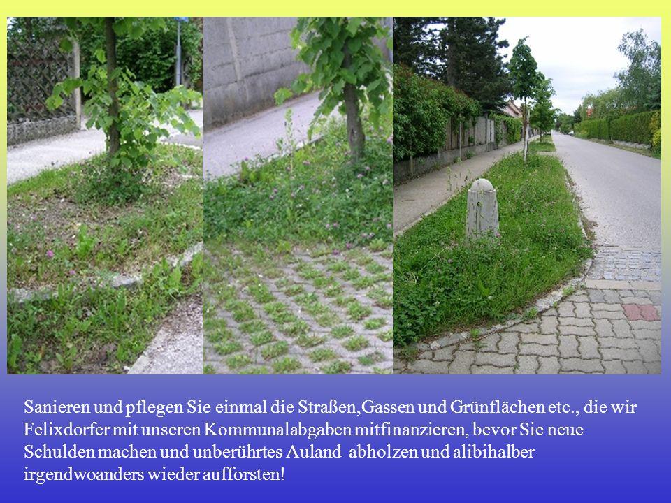 Sanieren und pflegen Sie einmal die Straßen,Gassen und Grünflächen etc., die wir Felixdorfer mit unseren Kommunalabgaben mitfinanzieren, bevor Sie neu