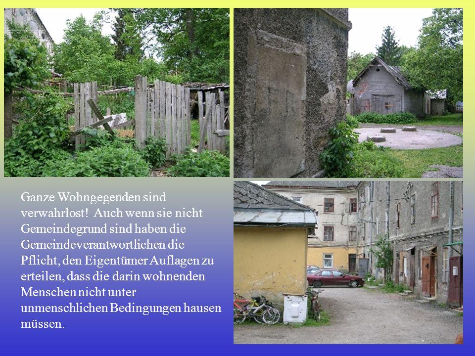 Ganze Wohngegenden sind verwahrlost! Auch wenn sie nicht Gemeindegrund sind haben die Gemeindeverantwortlichen die Pflicht, den Eigentümer Auflagen zu