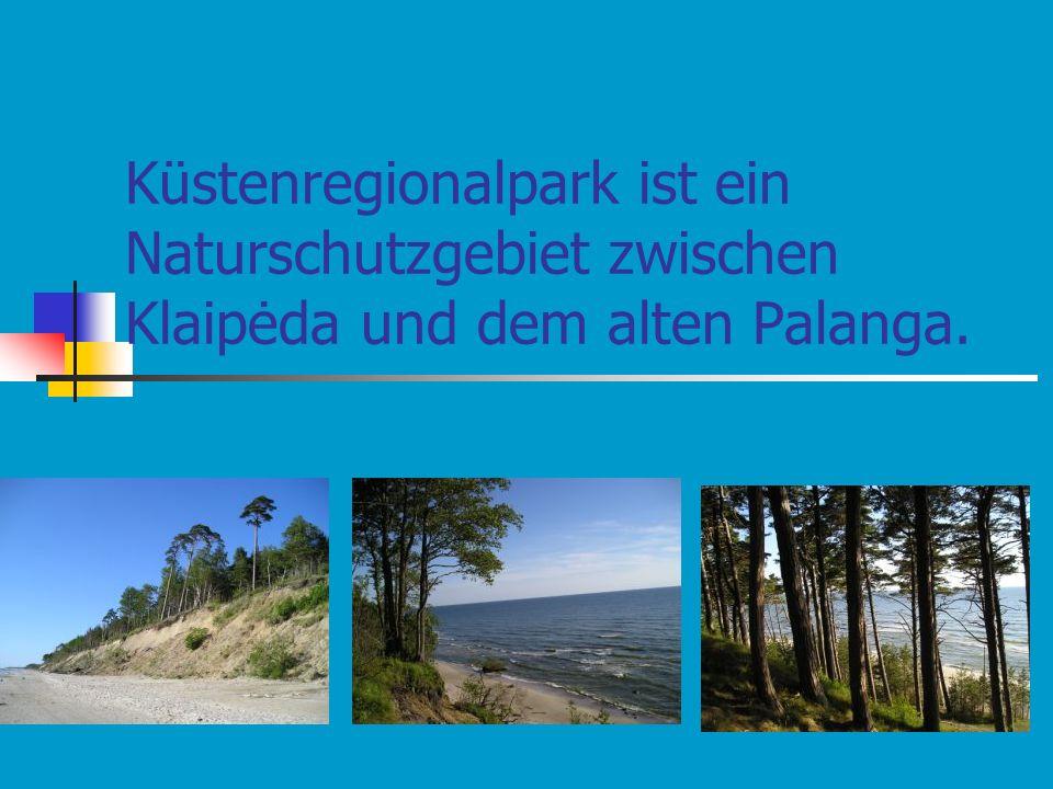 Küstenregionalpark ist ein Naturschutzgebiet zwischen Klaipėda und dem alten Palanga.