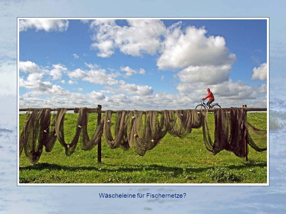 Ostseebad Thiessow Der Südstrand ist für seine unruhige See und gefährliche Strömungen bekannt.