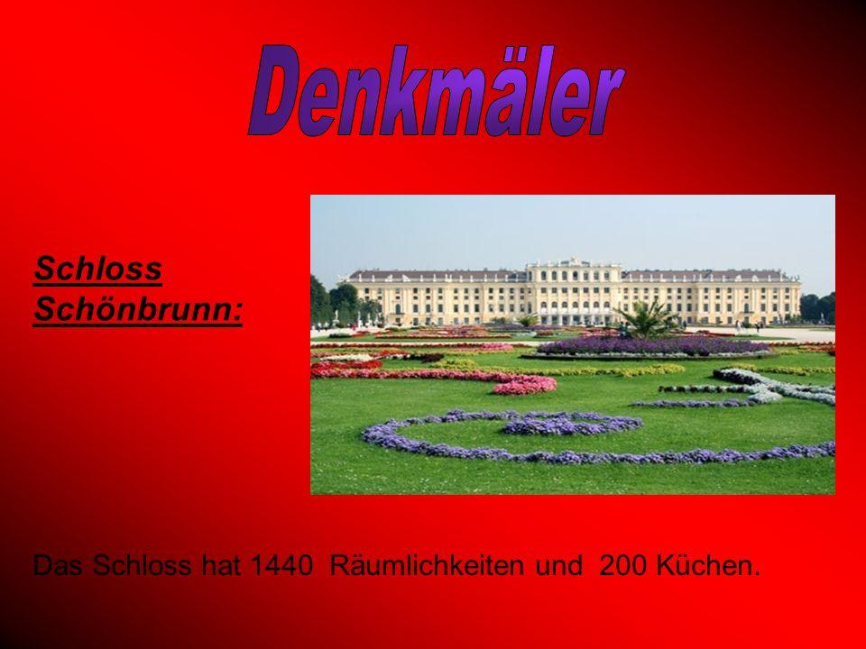 Das Schloss hat 1440 Räumlichkeiten und 200 Küchen. Schloss Schönbrunn:
