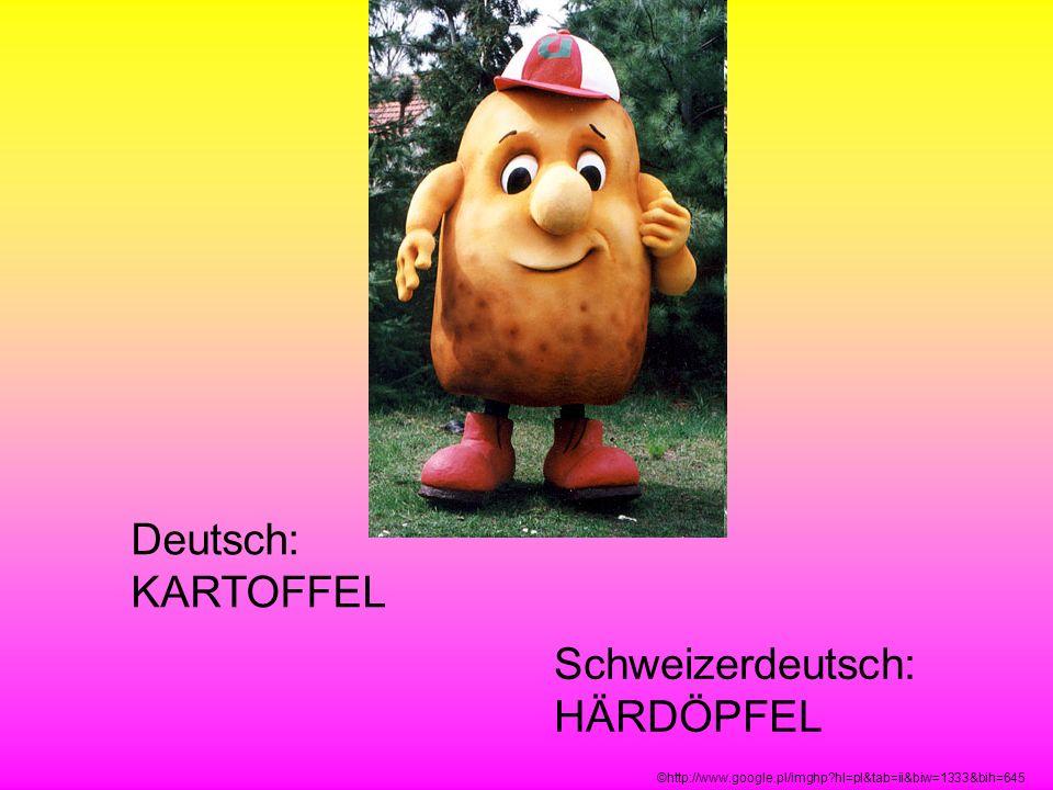 Deutsch: KARTOFFEL Schweizerdeutsch: HÄRDÖPFEL ©http://www.google.pl/imghp?hl=pl&tab=ii&biw=1333&bih=645