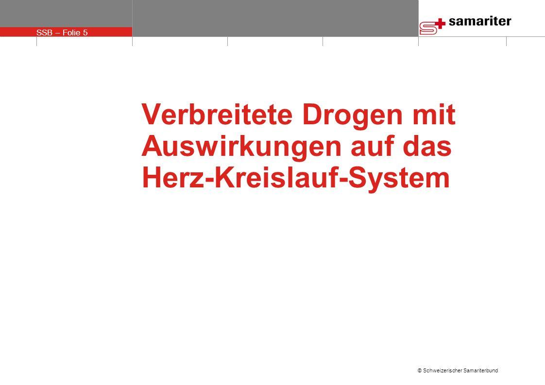 SSB – Folie 16 © Schweizerischer Samariterbund Erfolgskontrolle Organisation Praktische Erfolgskontrolle CPR