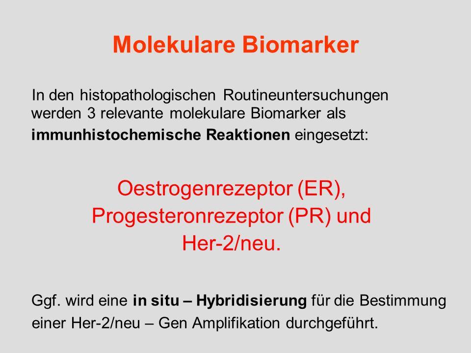 Molekulare Biomarker In den histopathologischen Routineuntersuchungen werden 3 relevante molekulare Biomarker als immunhistochemische Reaktionen einge