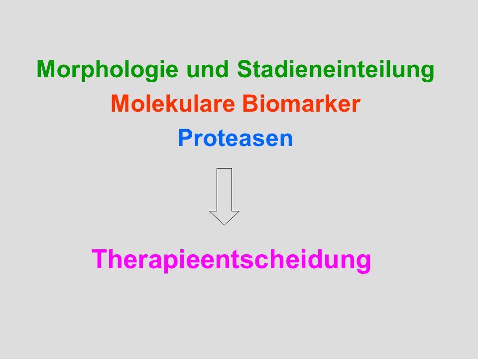 Morphologie und Stadieneinteilung Molekulare Biomarker Proteasen Therapieentscheidung