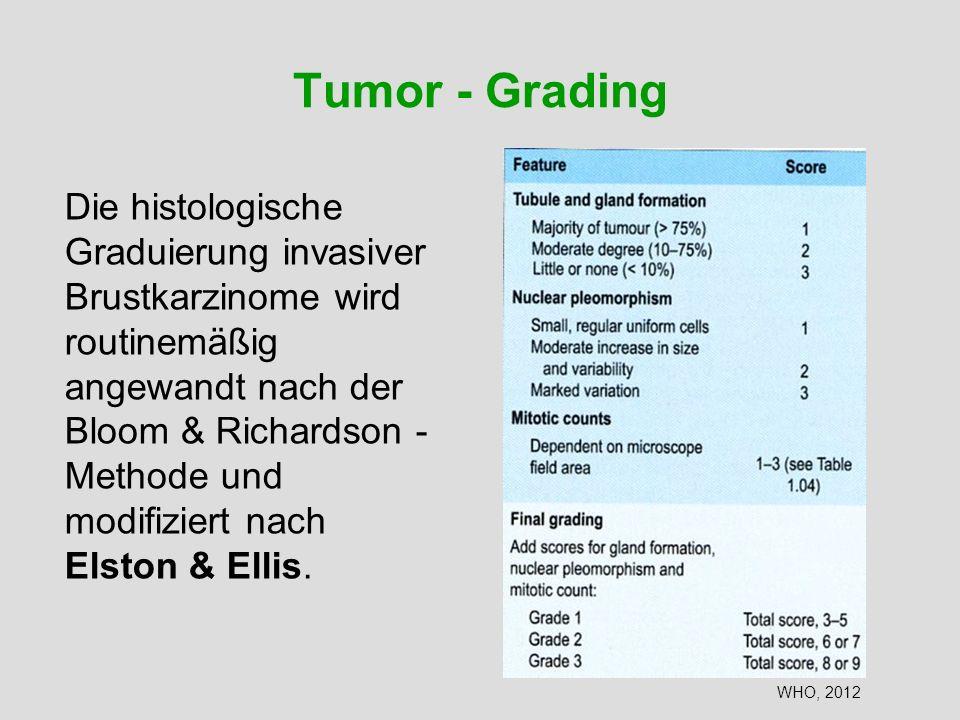 Tumor - Grading Die histologische Graduierung invasiver Brustkarzinome wird routinemäßig angewandt nach der Bloom & Richardson - Methode und modifizie